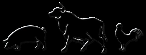 ISOLATE-ANIMALS
